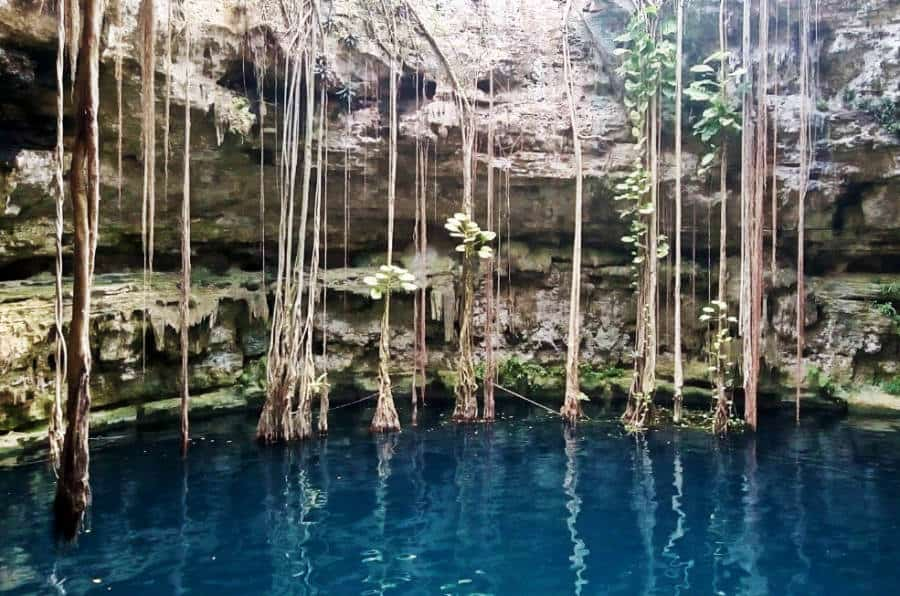 A beautiful view of a cenote in Valladolid, Mexico.