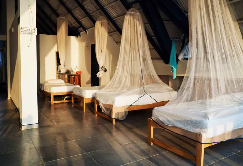 At one of the best hostels in Rincon del Mar, single beds arranged next to each other, each protected with a mosquito net hanging from the ceiling.