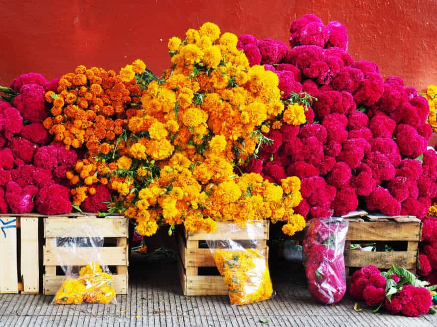 Day of the Dead flowers - Orange Marigolds and deep pink flowers stacked outside of a market in Mexico.