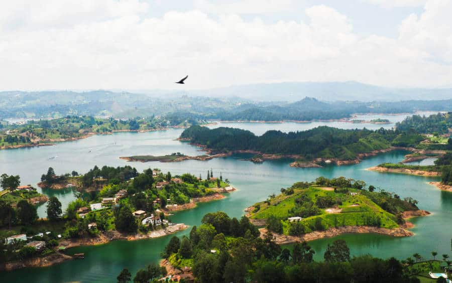 A large bird soars above Guatape lake which looks like an expansive body of water with many coves and peninsulas jutting into the water.